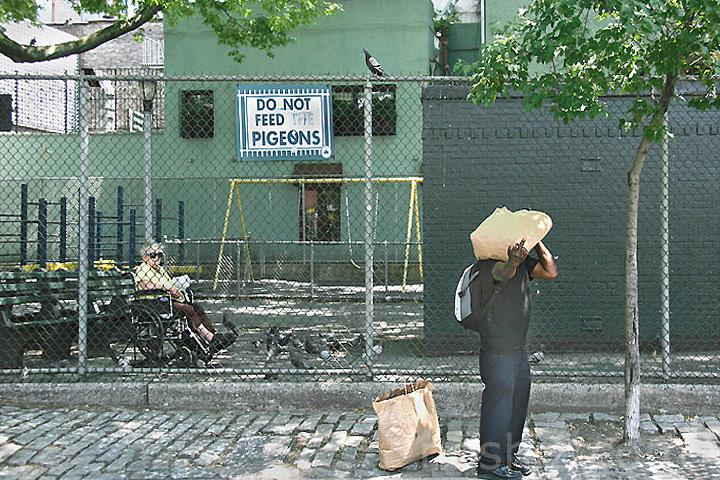 Do Not Feed the Pigeons!
